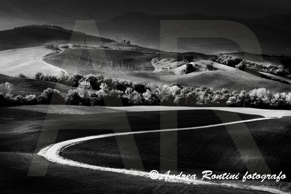 Cod.01-395 bn Val d'Orcia-0
