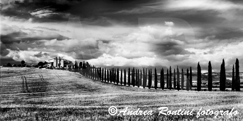 Cod.01-398 bn Val d'Orcia-0