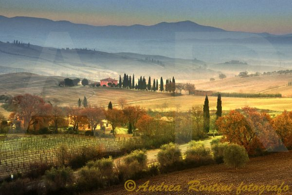 Cod.01-531 Val d'Orcia-0