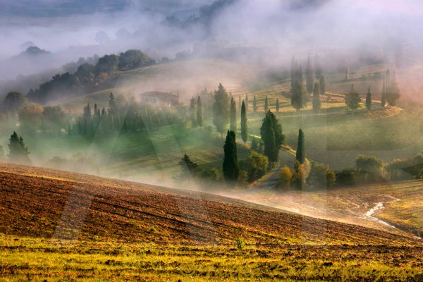 Cod.01-533 Val d'Orcia-0