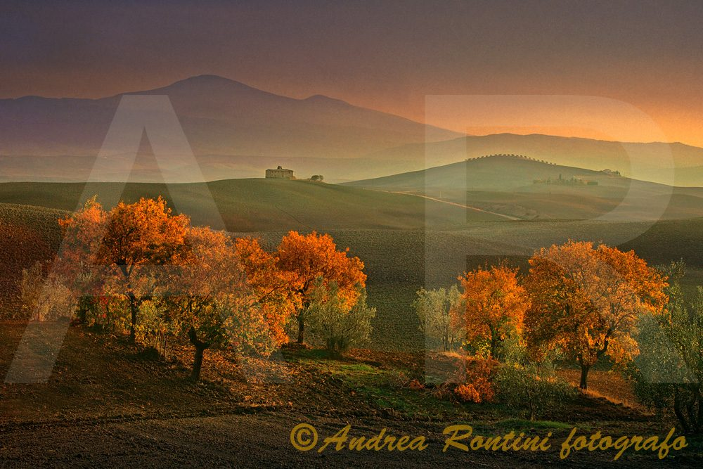 Cod.01-337 Val d'Orcia-0