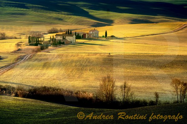 Cod.01-460 Val d'Orcia-0