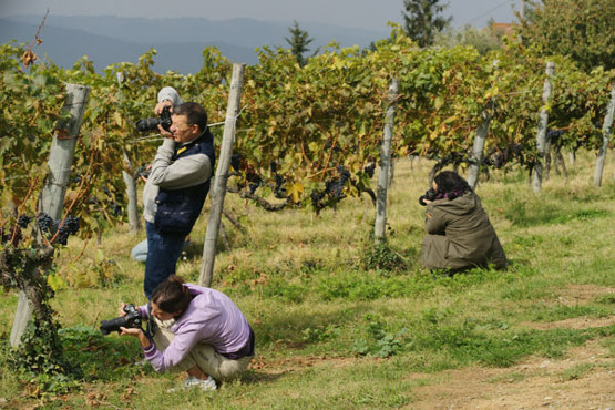 Photographic workshop on the Chianti Classico landscape, takes place in Autumn